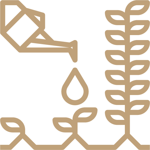 icon of watering plant
