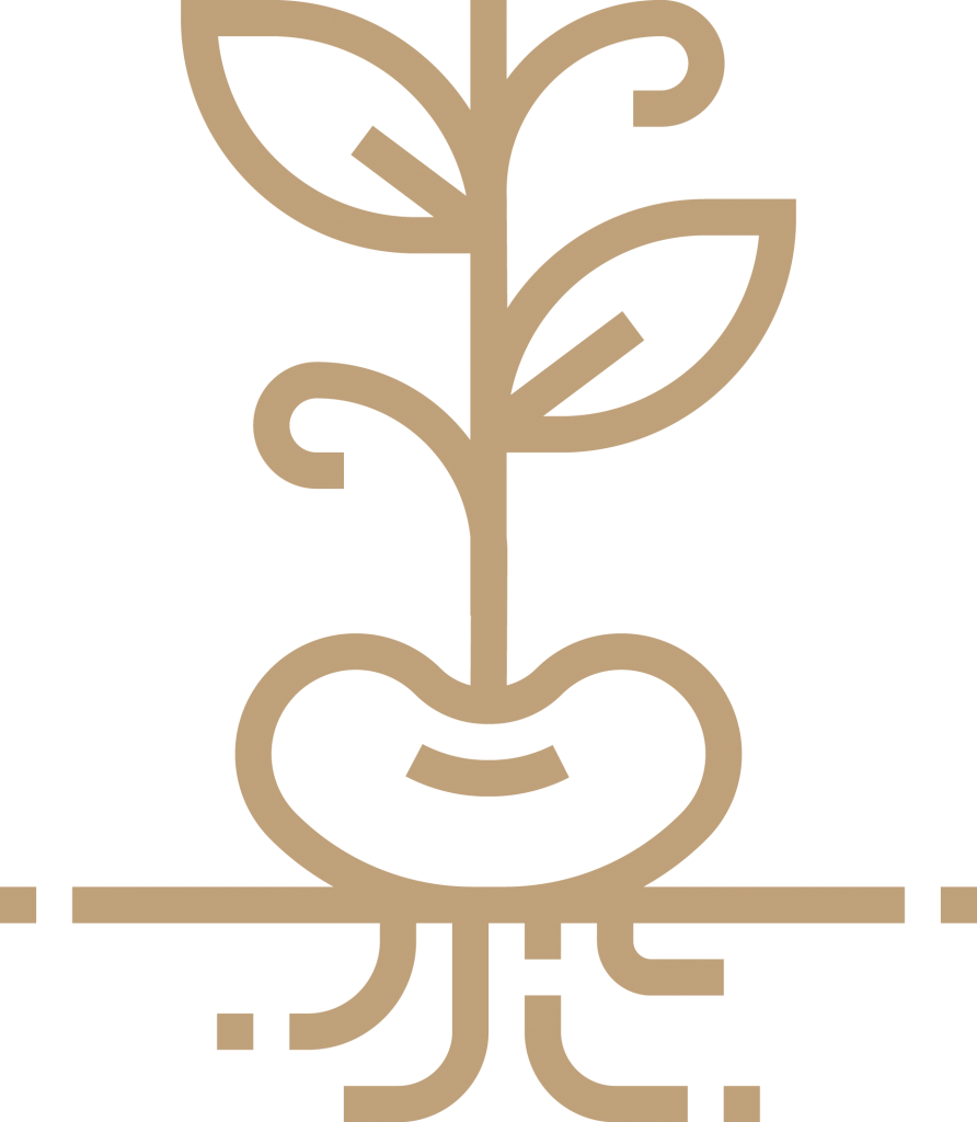 Icon of plant with roots